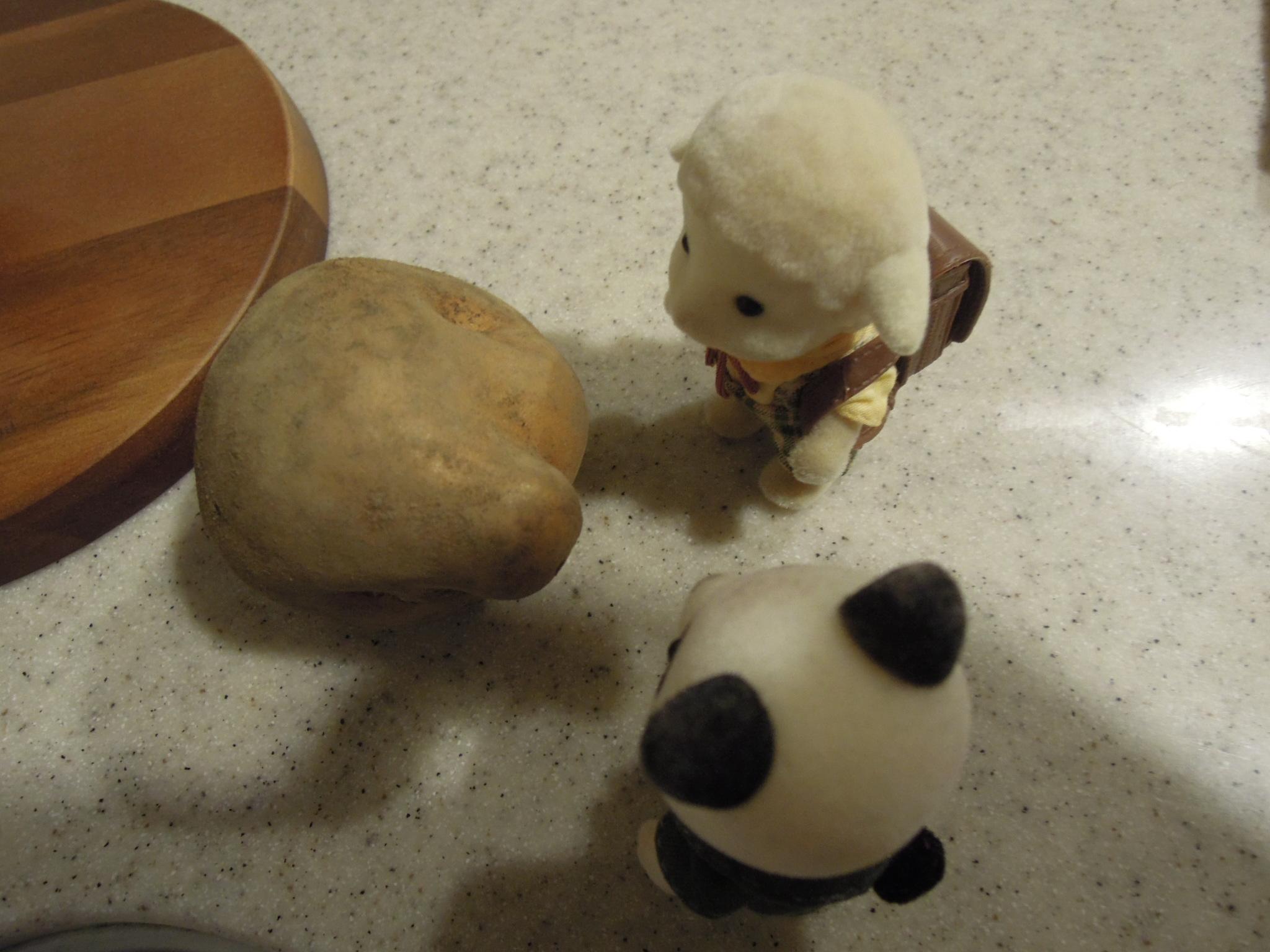 【雑談】久々にパンダを連れて小旅行へ出かける!そうだ!京都に行こう!パート2